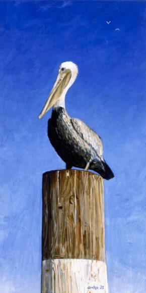 The Pelican Brief 12x24